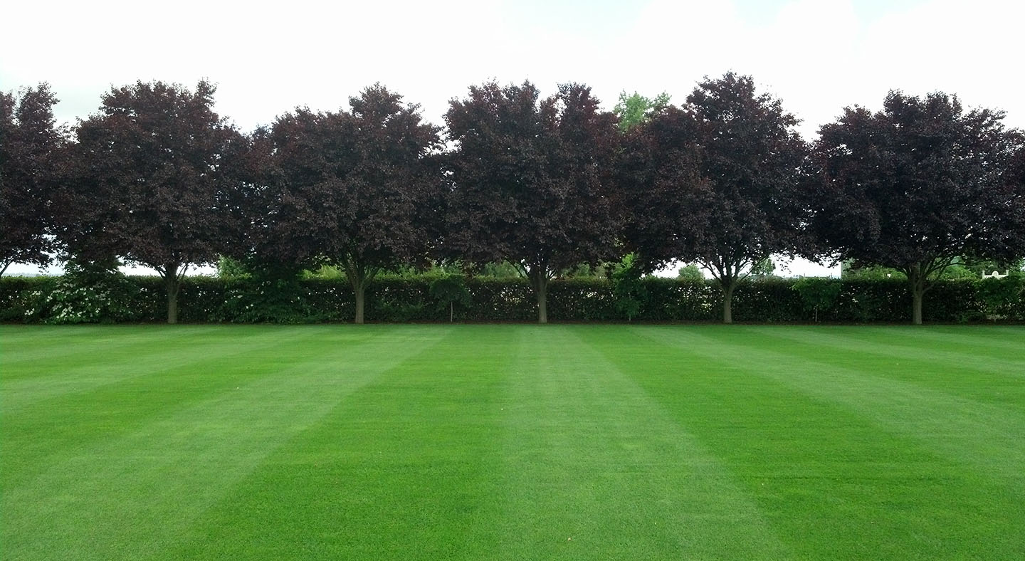 Raising Lawn Edging and Levelling | Perfect Ground Solutions Ltd