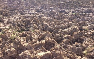 Managing Soils - Soil Types Essex, Hertfordshire and Berkshire