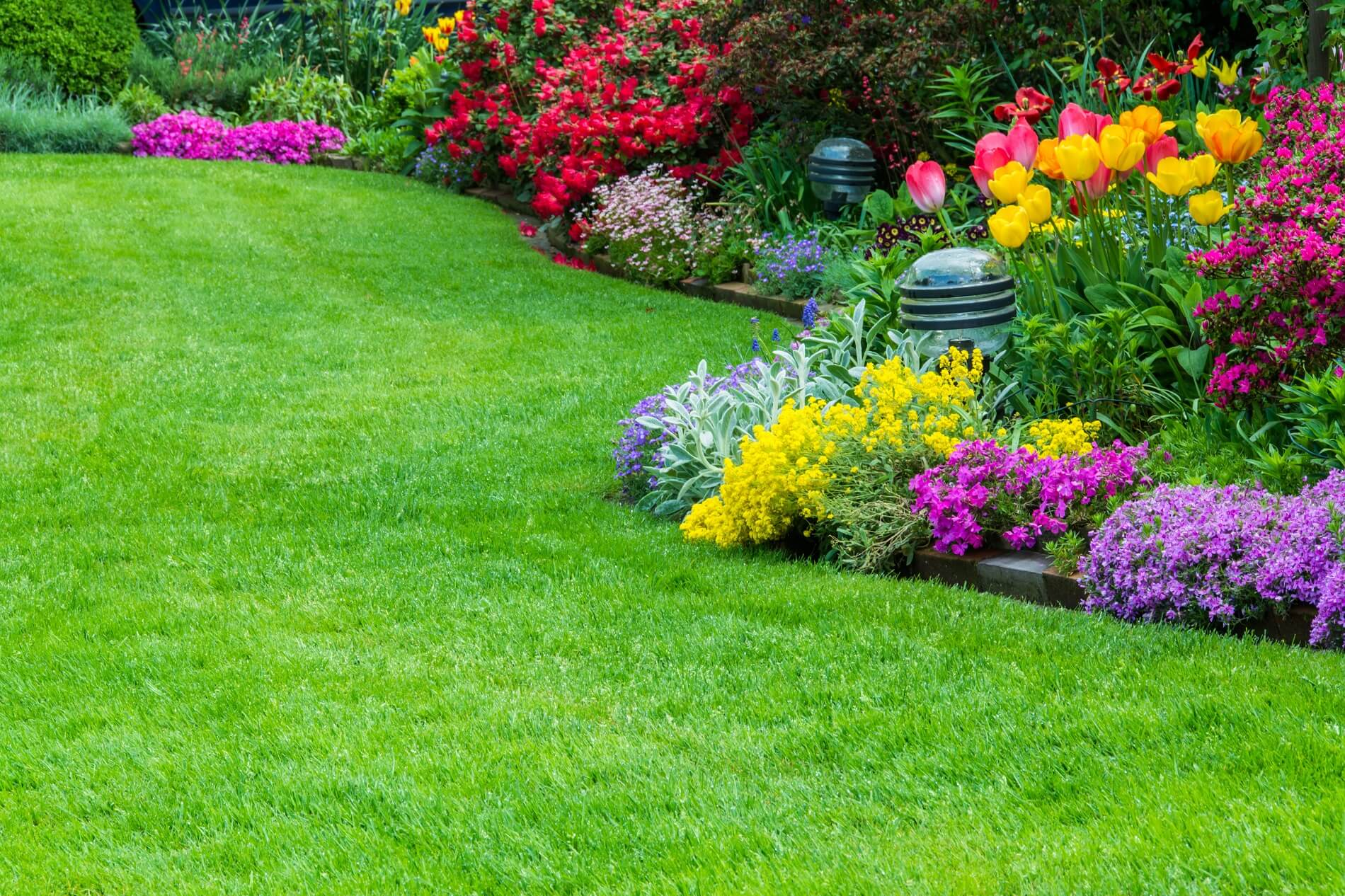 Lawn Replacement Bedfordshire